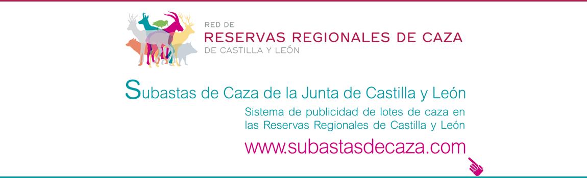 Subastasdecaza.com