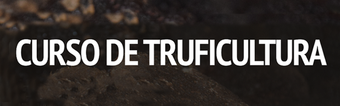 Curso truficultura. Cesefor, Ministerio de Agricultura, Pesca y Alimentación, Junta de Castilla y León