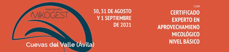 Certificado 'Experto en aprovechamiento micológico' nivel básico en Ávila desde el 30 de agosto