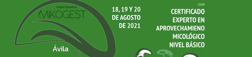 Certificado 'Experto en aprovechamiento micológico' nivel básico en Ávila desde el 18 de agosto