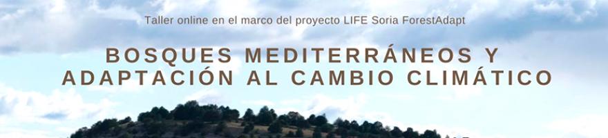 Taller online 'Bosques mediterráneos y adaptación al cambio climático'. Proyecto LIFE Soria Forest Adapt