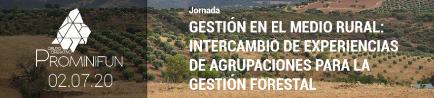Jornada 'Gestión en el medio rural: Intercambio de experiencias y agrupaciones para la mejora de la producción forestal'