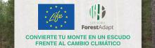 Seminario en línea Life Soria ForestAdapt